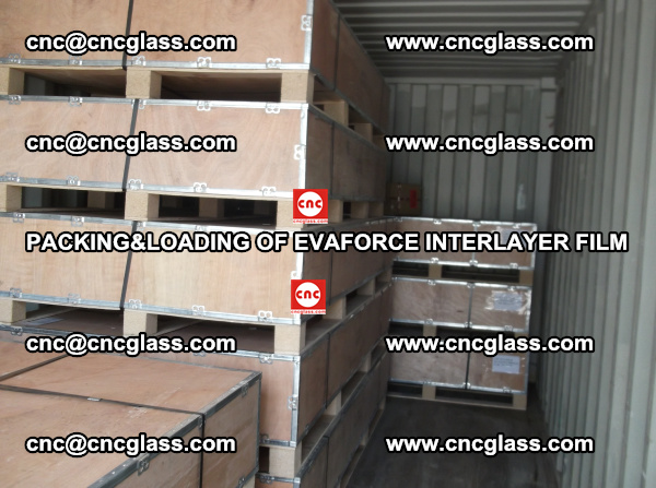 PACKING&LOADING OF EVAFORCE INTERLAYER FILM for safety laminated glass (20)