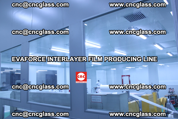 EVAFORCE INTERLAYER FILM SMART PRODUCING LINE PURIFIED (11)
