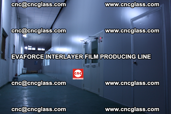 EVAFORCE INTERLAYER FILM SMART PRODUCING LINE PURIFIED (8)