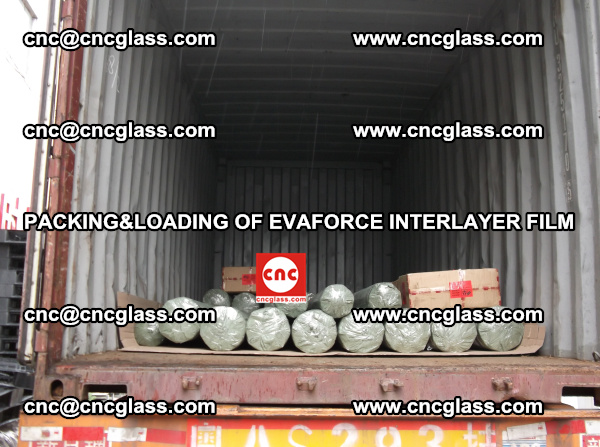 PACKING AND LOADING OF EVAFORCE INTERLAYER FILM (6)