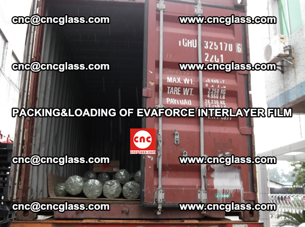 PACKING AND LOADING OF EVAFORCE INTERLAYER FILM (7)